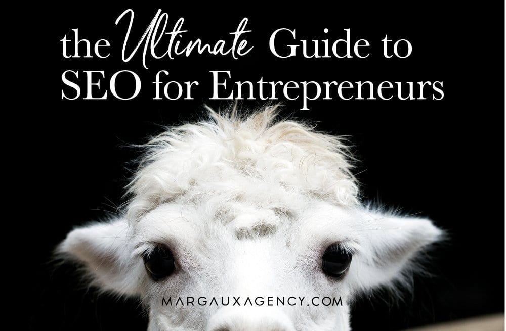 THE ULTIMATE GUIDE TO SEO FOR ENTREPRENEURS